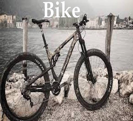 Picture for category BIKE