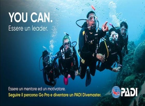 Picture of PADI Divemaster