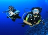 Picture of PADI Adventure Diver