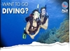 Picture of PADI Discover Scuba Diving